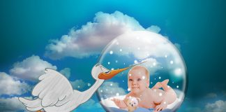 מידע על טיפולי פוריות