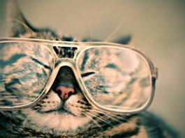 הסרת משקפיים בלייזר - מהו ניתוח לייזר להסרת משקפיים?